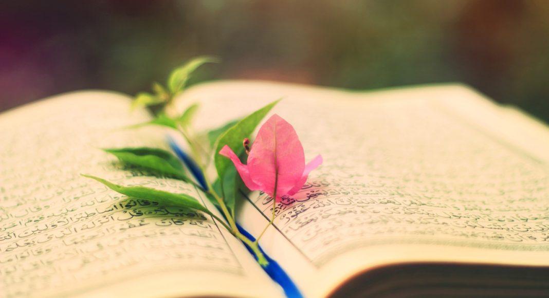 Cvijet Knjiga propisi muslimanka