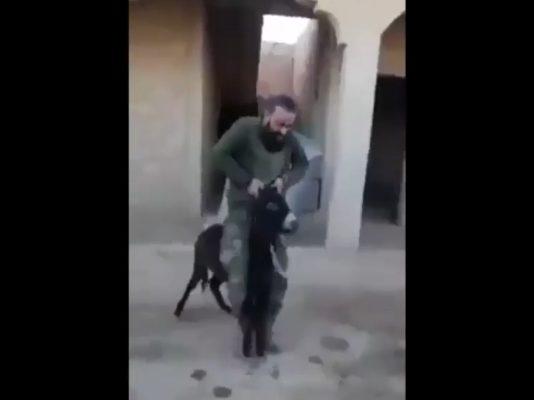 Asadov terorista se iživljava nad bespomoćnom životinjom